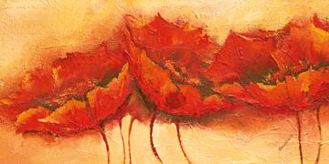 Canvas doek Wilder Mohn