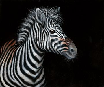 Canvas doek Zebra II