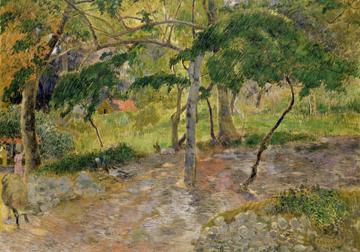 Canvas doek Tropische Landschaft auf Martini