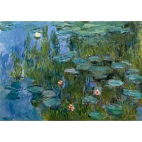Canvas schilderij Seerosen (Nympheas)