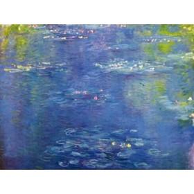 Canvas schilderij Nympheas II
