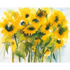 Canvas schilderij Sonnenblumenfeld