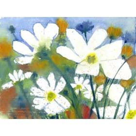 Canvas schilderij Weisse Cosmea und Mohn