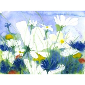 Canvas schilderij Weisse Cosmea und Kornblumen