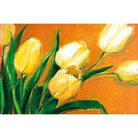 Canvas schilderij Tulipa Nova