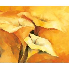 Canvas schilderij Callas