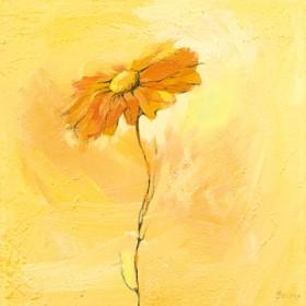 Canvas schilderij Fiore 1