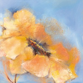 Canvas schilderij Bright Anemone II