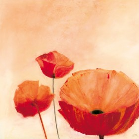 Canvas schilderij Poppy Queen