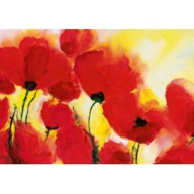 Canvas schilderij Roter Mohn Toskana
