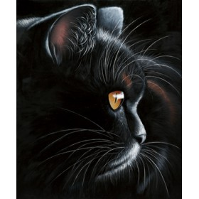 Canvas schilderij Black Tiger
