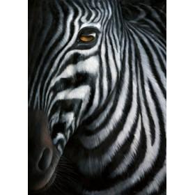 Canvas schilderij Zebra I
