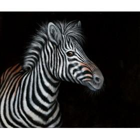 Canvas schilderij Zebra II