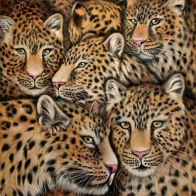 Canvas schilderij Leopardenmix