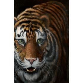 Canvas schilderij Tiger