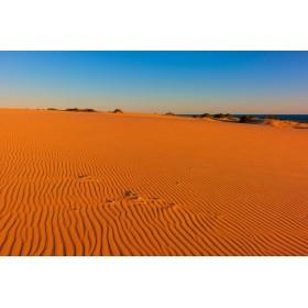 Canvas schilderij Myall Lakes Dunes