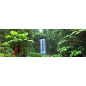 Canvas schilderij Millaa Millaa Falls, Australia