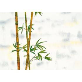 Canvas schilderij Bambus