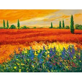 Canvas schilderij Toskana III