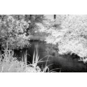 Canvas schilderij Flusslauf
