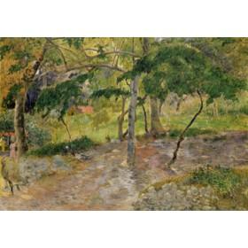 Canvas schilderij Tropische Landschaft auf Martini
