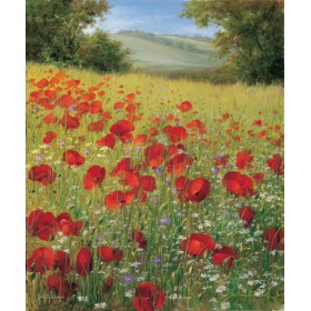 Canvas schilderij Sparkling field II