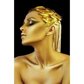 Aluminium schilderij Golden Feathers fotokunst