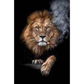 Aluminium schilderij Lion with Sigar