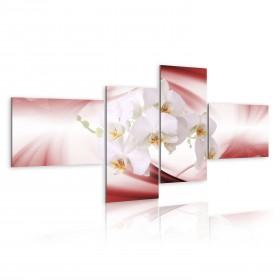 Foto schilderij - Orchideeën op zachte roze achtergrond