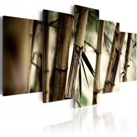 Foto schilderij - Aziatische bamboe bos