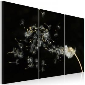 Foto schilderij - Paardebloem verwaait in de wind