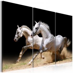 Foto schilderij - Horses- power and velocity