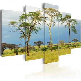 Foto schilderij - African greenery