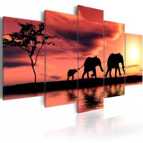 Foto schilderij - African elephants family