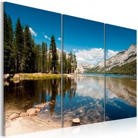 Foto schilderij - Mountains, trees and pure lake
