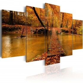 Foto schilderij - Redness of autumn