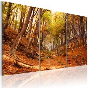 Foto schilderij - Fall gorge