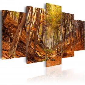 Foto schilderij - Orange autumn