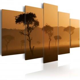 Foto schilderij - Fog over a savannah