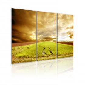 Foto schilderij - Spring in a village