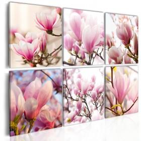 Foto schilderij - Southern magnolias