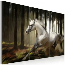 Foto schilderij - A white horse in the midst of the trees