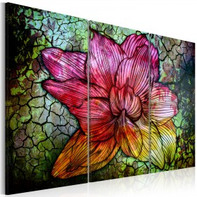 Foto schilderij - A rainbow-hued abstract flower
