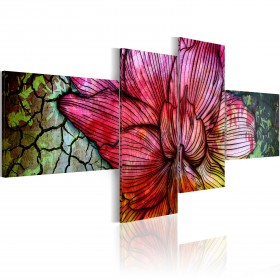 Foto schilderij - A rainbow-hued flower
