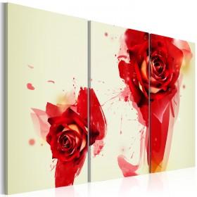 Foto schilderij - A new look on a rose