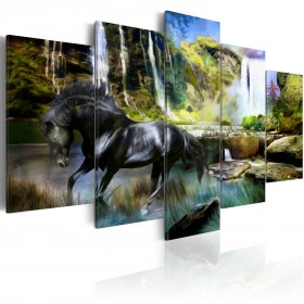 Foto schilderij - Black horse on the background of paradise waterfall