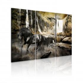 Foto schilderij - Black horse and rocky waterfall