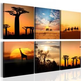 Foto schilderij - African sceneries