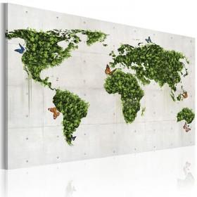 Foto schilderij - Groene land van vlinders