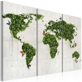 Foto schilderij - Groene land van vlinders - triptiek